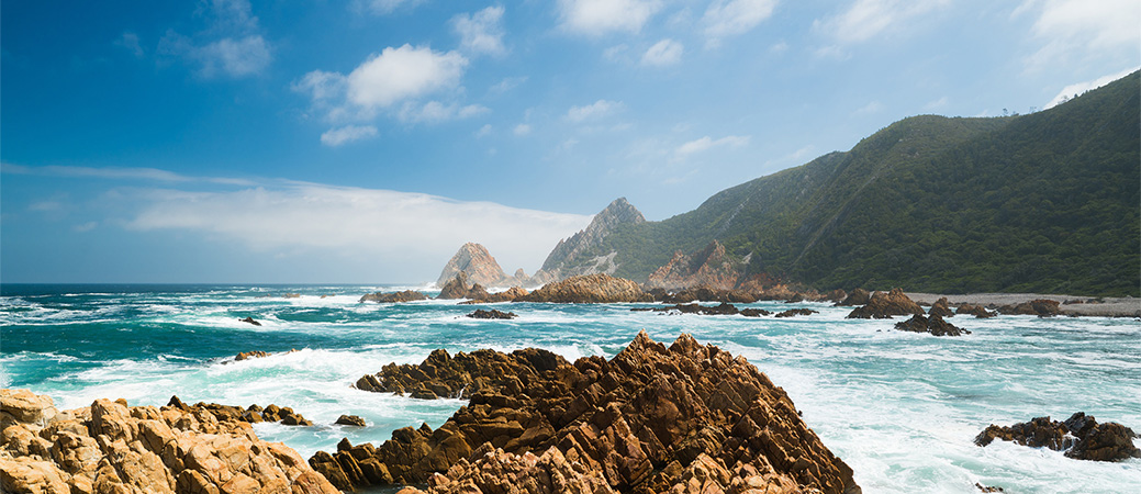 Spectacular hiking trails on the Garden Route