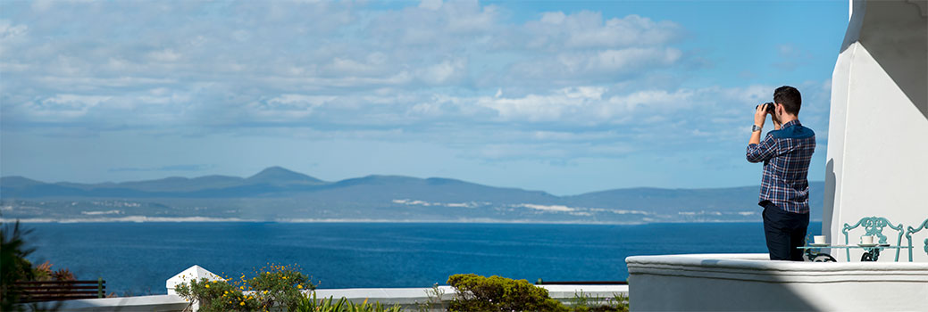 Whale watching for comfort of your room at The Marine in Hermanus