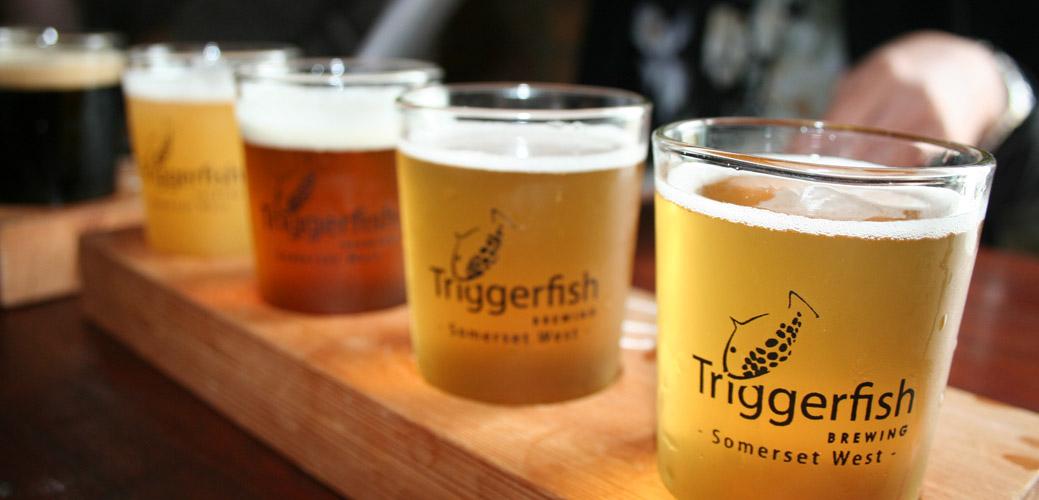 Tygerfish Brewery