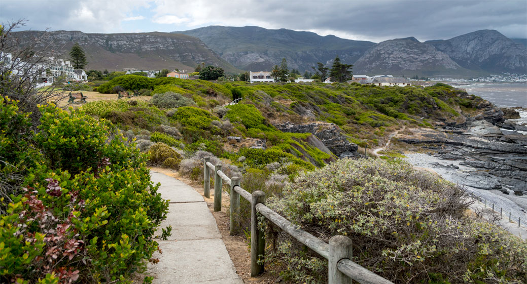 Your favourite thing about Hermanus….